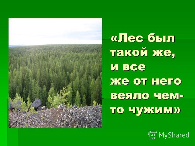 «Лес был такой же, и все же от него веяло чем- то чужим»