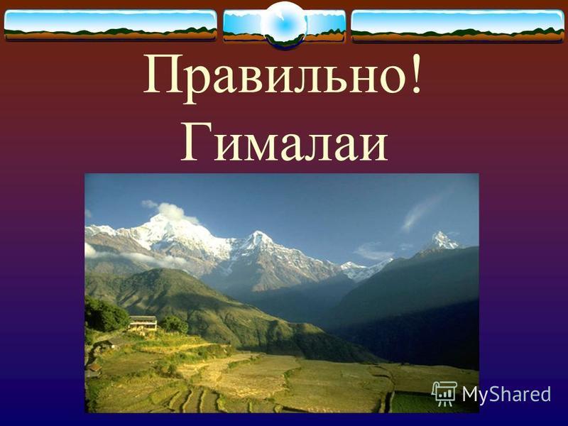 Правильно! Гималаи