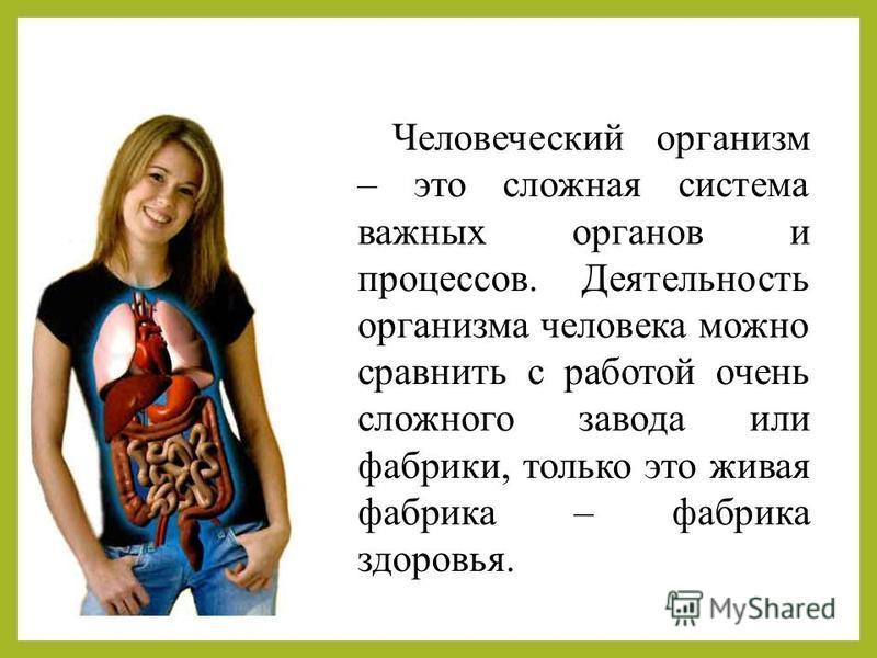 Человеческий организм – это сложная система важных органов и процессов. Деятельность организма человека можно сравнить с работой очень сложного завода или фабрики, только это живая фабрика – фабрика здоровья.