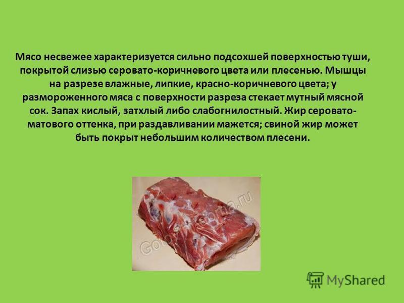 Мясо несвежее характеризуется сильно подсохшей поверхностью туши, покрытой слизью серовато-коричневого цвета или плесенью. Мышцы на разрезе влажные, липкие, красно-коричневого цвета; у размороженного мяса с поверхности разреза стекает мутный мясной с