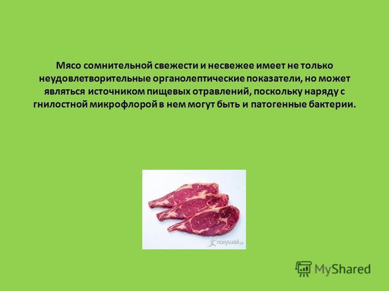 Мясо сомнительной свежести и несвежее имеет не только неудовлетворительные органолептические показатели, но может являться источником пищевых отравлений, поскольку наряду с гнилостной микрофлорой в нем могут быть и патогенные бактерии.