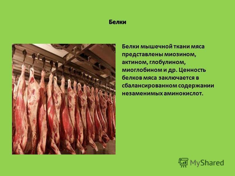 Белки мышечной ткани мяса представлены миозином, актином, глобулином, миоглобином и др. Ценность белков мяса заключается в сбалансированном содержании незаменимых аминокислот.
