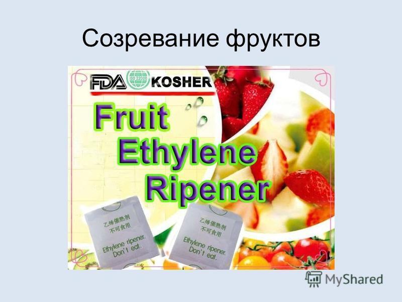 Созревание фруктов