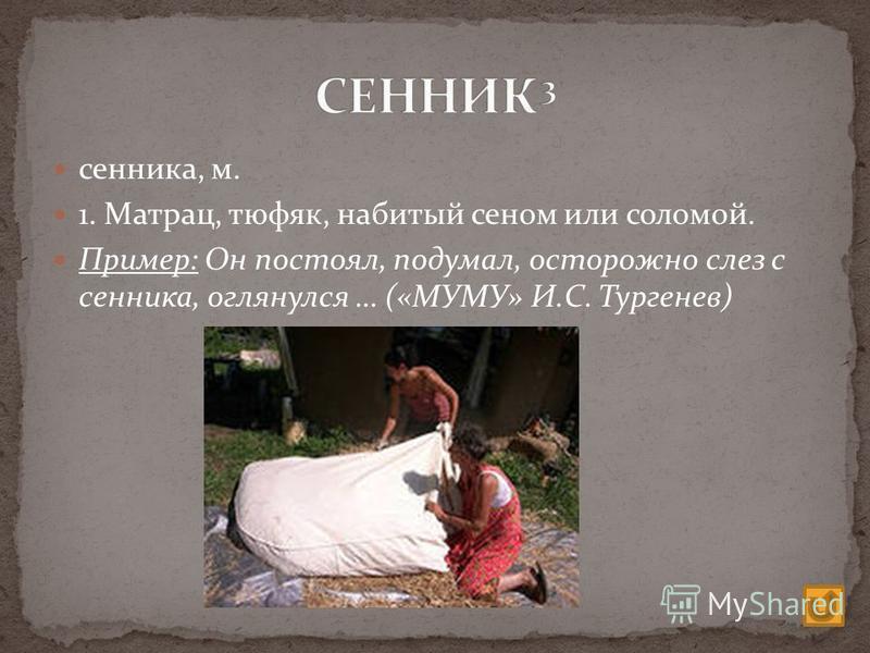 сенника, м. 1. Матрац, тюфяк, набитый сеном или соломой. Пример: Он постоял, подумал, осторожно слез с сенника, оглянулся … («МУМУ» И.С. Тургенев)