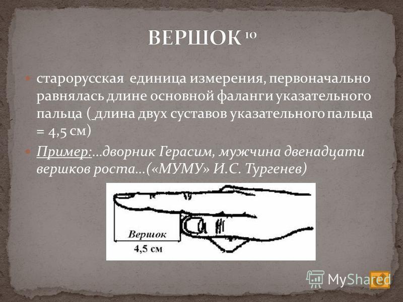 старорусская единица измерения, первоначально равнялась длине основной фаланги указательного пальца ( длина двух суставов указательного пальца = 4,5 см) Пример:…дворник Герасим, мужчина двенадцати вершков роста…(«МУМУ» И.С. Тургенев)