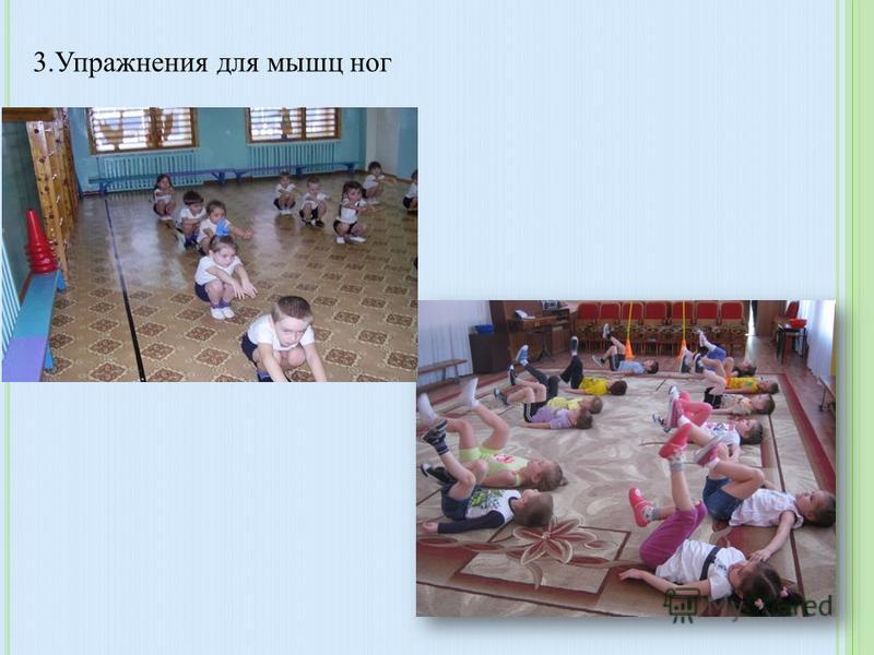 2. Упражнения для мышц туловища (наклоны, повороты)