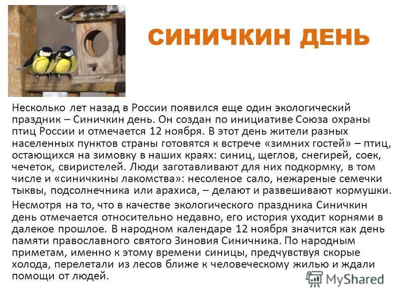 СИНИЧКИН ДЕНЬ Несколько лет назад в России появился еще один экологический праздник – Синичкин день. Он создан по инициативе Союза охраны птиц России и отмечается 12 ноября. В этот день жители разных населенных пунктов страны готовятся к встрече «зим