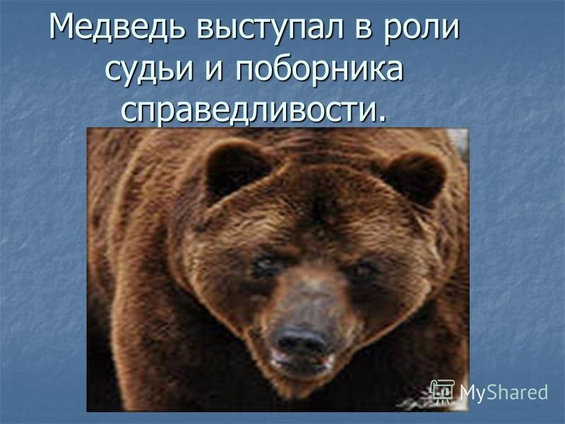 Медведь выступал в роли судьи и поборника справедливости.