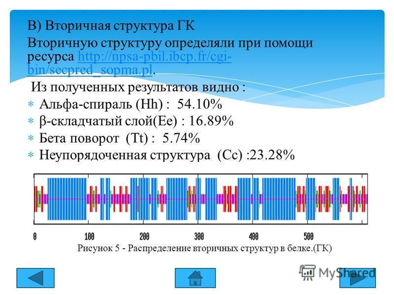 В) Вторичная структура ГК Вторичную структуру определяли при помощи ресурса http://npsa-pbil.ibcp.fr/cgi- bin/secpred_sopma.pl.http://npsa-pbil.ibcp.fr/cgi- bin/secpred_sopma.pl Из полученных результатов видно : Альфа-спираль (Hh) : 54.10% β-складчат
