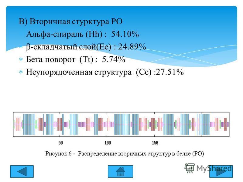 В) Вторичная структура РО Альфа-спираль (Hh) : 54.10% β-складчатый слой(Ee) : 24.89% Бета поворот (Tt) : 5.74% Неупорядоченная структура (Cc) :27.51% Рисунок 6 - Распределение вторичных структур в белке (РО)