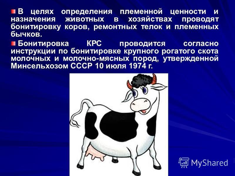 В целях определения племенной ценности и назначения животных в хозяйствах проводят бонтировку коров, ремонтных телок и племенных бычков. Бонтировка КРС проводится согласно инструкции по бонтировке крупного рогатого скота молочных и молочно-мясных пор