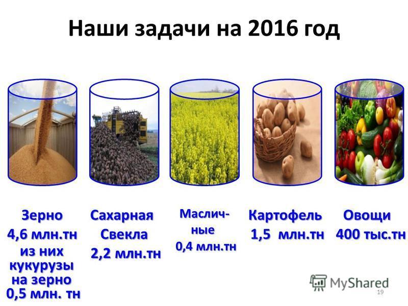 Наши задачи на 2016 год 19 Зерно 4,6 млн.тонн Сахарная Свекла 2,2 млн.тонн 2,2 млн.тонн Картофель 1,5 млн.тонн Овощи 400 тыс.тонн 400 тыс.тонн из них кукурузы на зерно 0,5 млн. тонн Маслич-ные 0,4 млн.тонн 0,4 млн.тонн