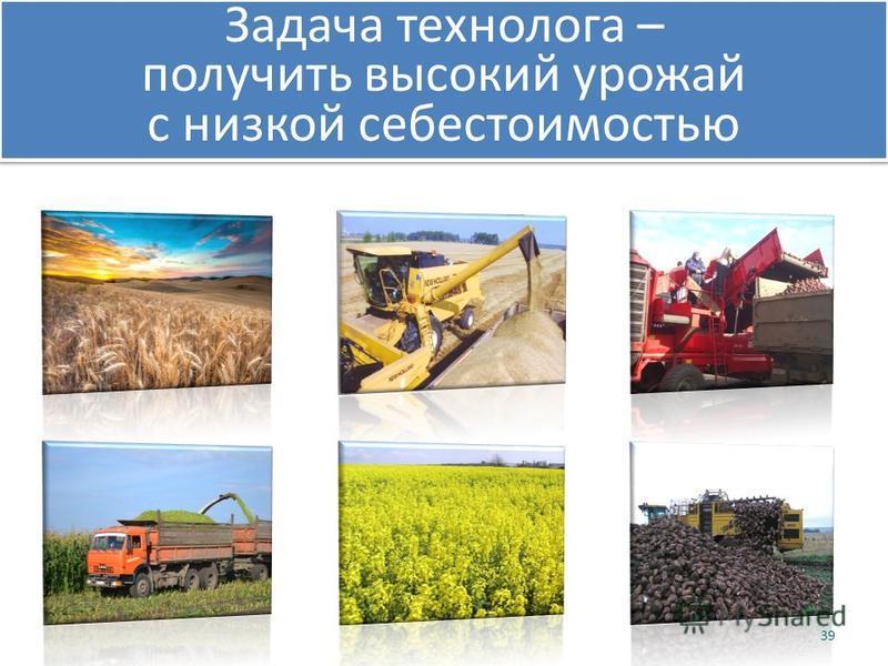 Задача технолога – получить высокий урожай с низкой себестоимостью Задача технолога – получить высокий урожай с низкой себестоимостью 39