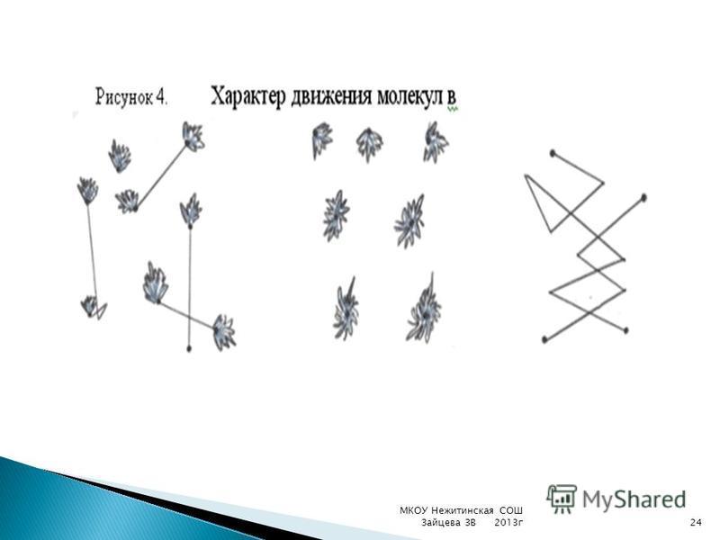 МКОУ Нежитинская СОШ Зайцева ЗВ 2013 г 24