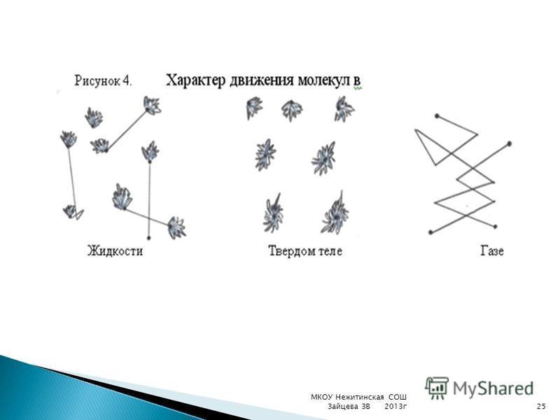 МКОУ Нежитинская СОШ Зайцева ЗВ 2013 г 25