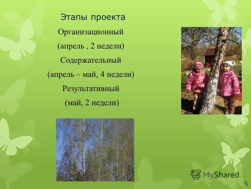 Этапы проекта Организационный (апрель, 2 недели) Содержательный (апрель – май, 4 недели) Результативный (май, 2 недели) 5