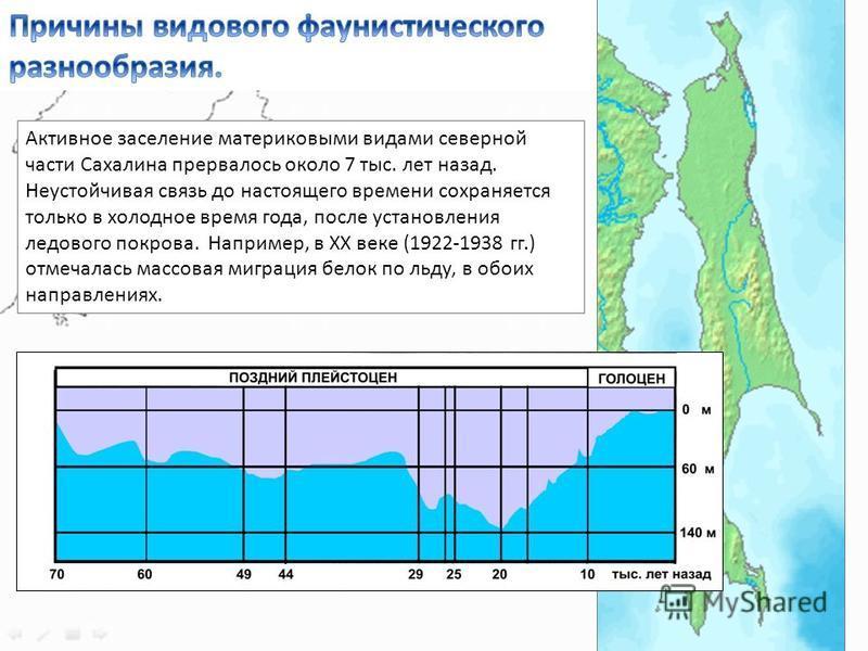 Активное заселение материковыми видами северной части Сахалина прервалось около 7 тыс. лет назад. Неустойчивая связь до настоящего времени сохраняется только в холодное время года, после установления ледового покрова. Например, в ХХ веке (1922-1938 г