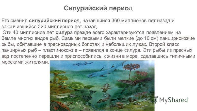 Его сменил силурийский период, начавшийся 360 миллионов лет назад и закончившийся 320 миллионов лет назад. Эти 40 миллионов лет силура прежде всего характеризуются появлением на Земле многих видов рыб. Самыми первыми были мелкие (до 10 см) панцирноко