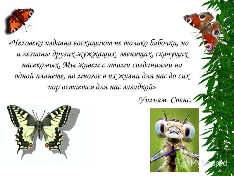 «Человека издавна восхищают не только бабочки, но и легионы других жужжащих, звенящих, скачущих насекомых. Мы живем с этими созданиями на одной планете, но многое в их жизни для нас до сих пор остается для нас загадкой» Уильям Спенс.