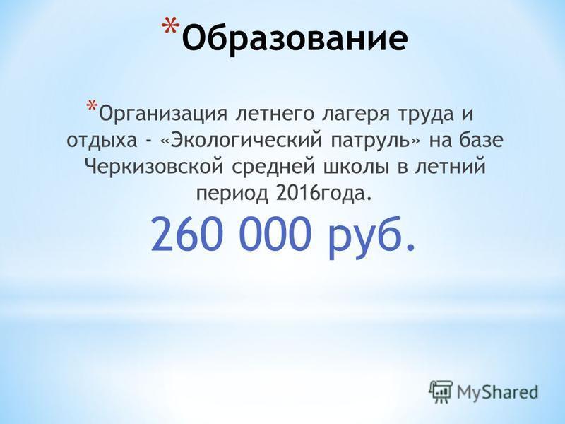 * Образование * Организация летнего лагеря труда и отдыха - «Экологический патруль» на базе Черкизовской средней школы в летний период 2016 года. 260 000 руб.