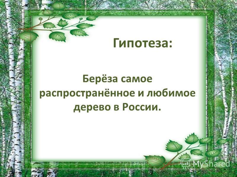 Гипотеза: Берёза самое распространённое и любимое дерево в России.