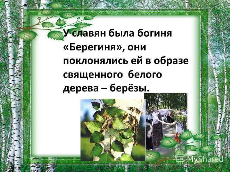 У славян была богиня «Берегиня», они поклонялись ей в образе священного белого дерева – берёзы.