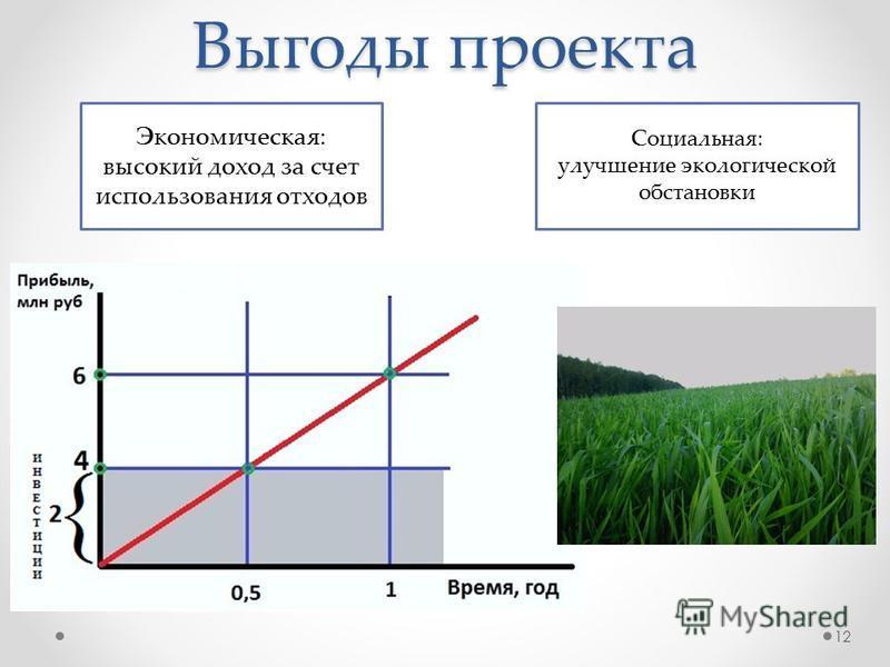 Выгоды проекта Экономическая: высокий доход за счет использования отходов Социальная: улучшение экологической обстановки 12
