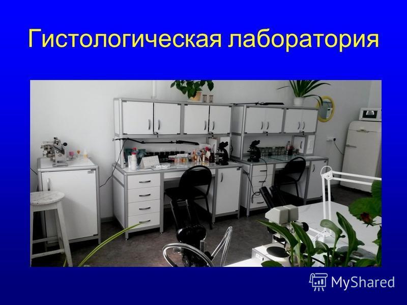 Гистологическая лаборатория