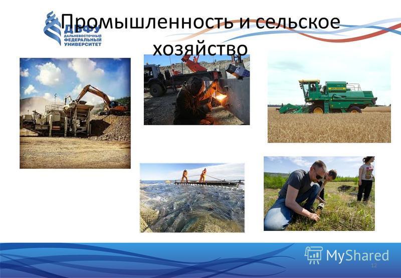 12 Промышленность и сельское хозяйство