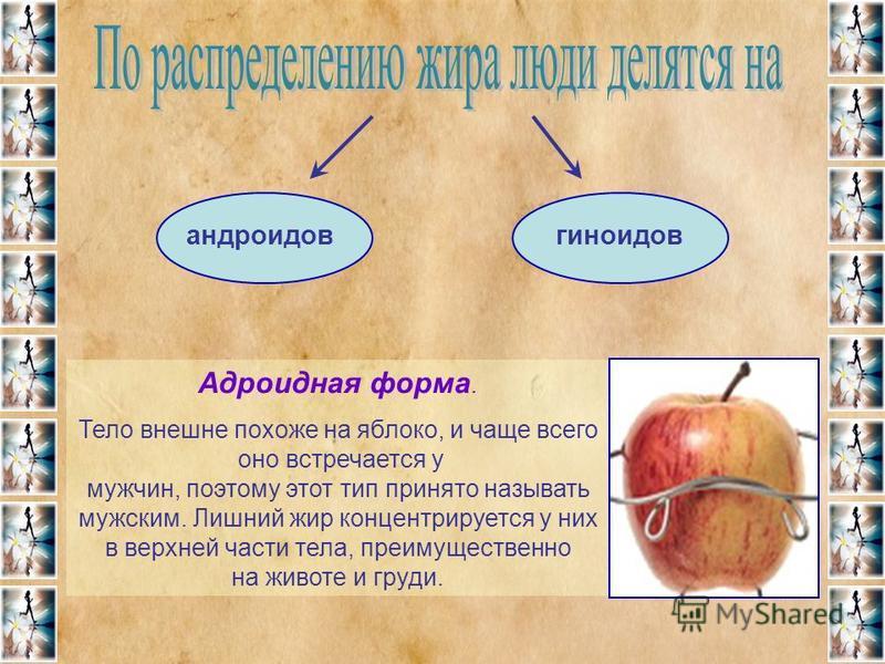 Адроидная форма. Тело внешне похоже на яблоко, и чаще всего оно встречается у мужчин, поэтому этот тип принято называть мужским. Лишний жир концентрируется у них в верхней части тела, преимущественно на животе и груди. андроидовгиноидов