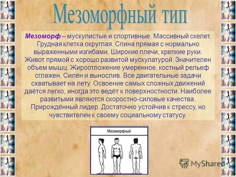 Мезоморф – мускулистые и спортивные. Массивный скелет. Грудная клетка округлая. Спина прямая с нормально выраженными изгибами. Широкие плечи, крепкие руки. Живот прямой с хорошо развитой мускулатурой. Значителен объем мышц. Жироотложение умеренное, к