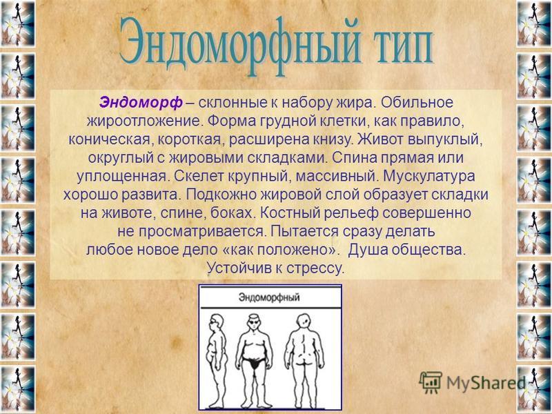 Эндоморф – склонные к набору жира. Обильное жироотложение. Форма грудной клетки, как правило, коническая, короткая, расширена книзу. Живот выпуклый, округлый с жировыми складками. Спина прямая или уплощенная. Скелет крупный, массивный. Мускулатура хо