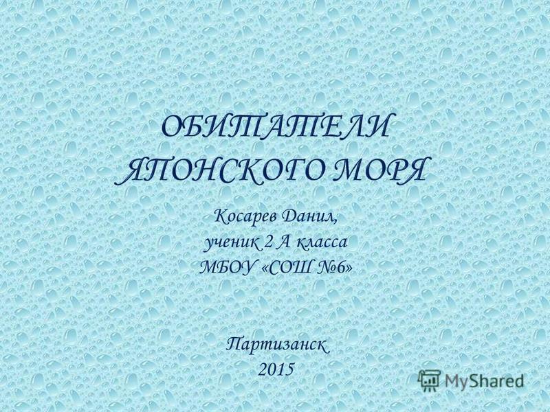 Косарев Данил, ученик 2 А класса МБОУ «СОШ 6» Партизанск 2015