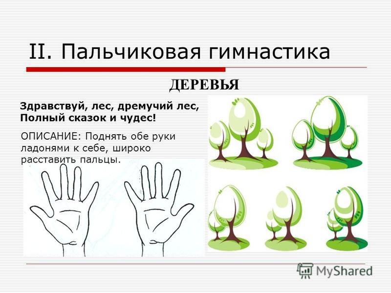 II. Пальчиковая гимнастика Здравствуй, лес, дремучий лес, Полный сказок и чудес! ОПИСАНИЕ: Поднять обе руки ладонями к себе, широко расставить пальцы. ДЕРЕВЬЯ