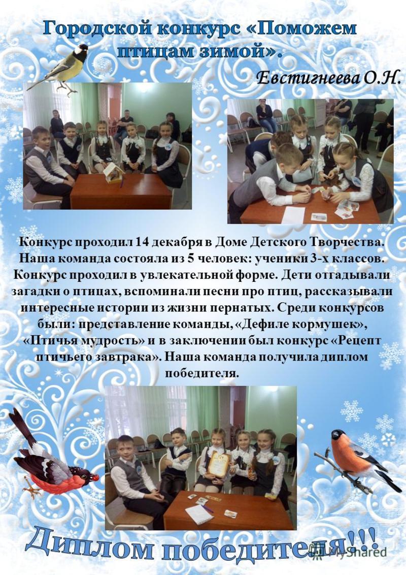 Евстигнеева О.Н. Конкурс проходил 14 декабря в Доме Детского Творчества. Наша команда состояла из 5 человек: ученики 3-х классов. Конкурс проходил в увлекательной форме. Дети отгадывали загадки о птицах, вспоминали песни про птиц, рассказывали интере