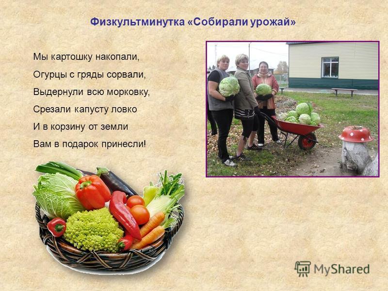 Физкультминутка «Собирали урожай» Мы картошку накопали, Огурцы с гряды сорвали, Выдернули всю морковку, Срезали капусту ловко И в корзину от земли Вам в подарок принесли!