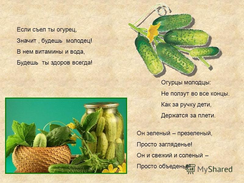 Если съел ты огурец, Значит, будешь молодец! В нем витамины и вода, Будешь ты здоров всегда! Он зеленый – презеленый, Просто загляденье! Он и свежий и соленый – Просто объеденье! Огурцы молодцы: Не ползут во все концы. Как за ручку дети, Держатся за
