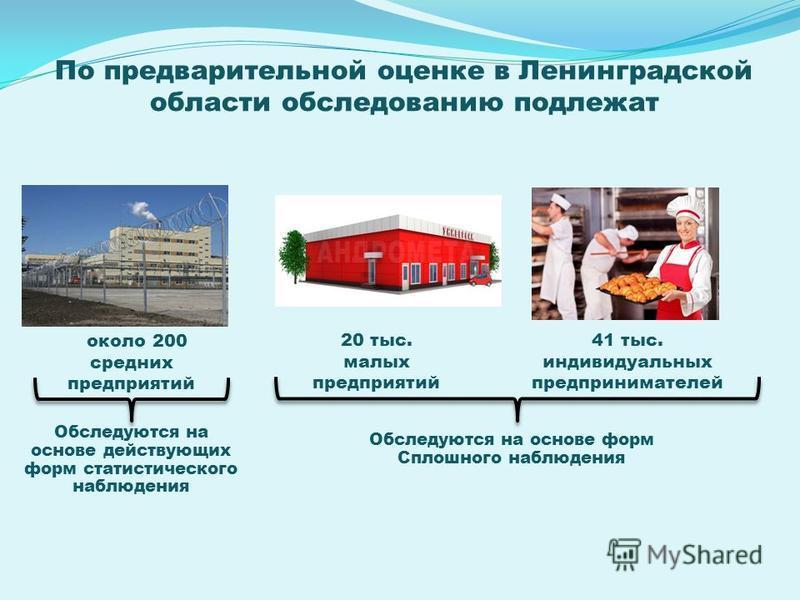 около 200 средних предприятий 20 тыс. малых предприятий 41 тыс. индивидуальных предпринимателей Обследуются на основе действующих форм статистического наблюдения Обследуются на основе форм Сплошного наблюдения По предварительной оценке в Ленинградско