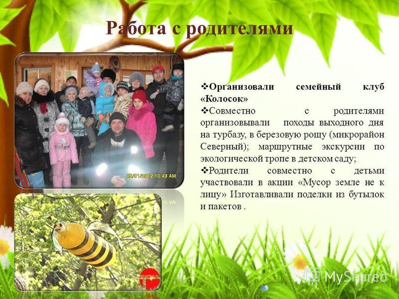 Работа с родителями Организовали семейный клуб «Колосок» Совместно с родителями организовывали походы выходного дня на турбазу, в березовую рощу (микрорайон Северный); маршрутные экскурсии по экологической тропе в детском саду; Родители совместно с д