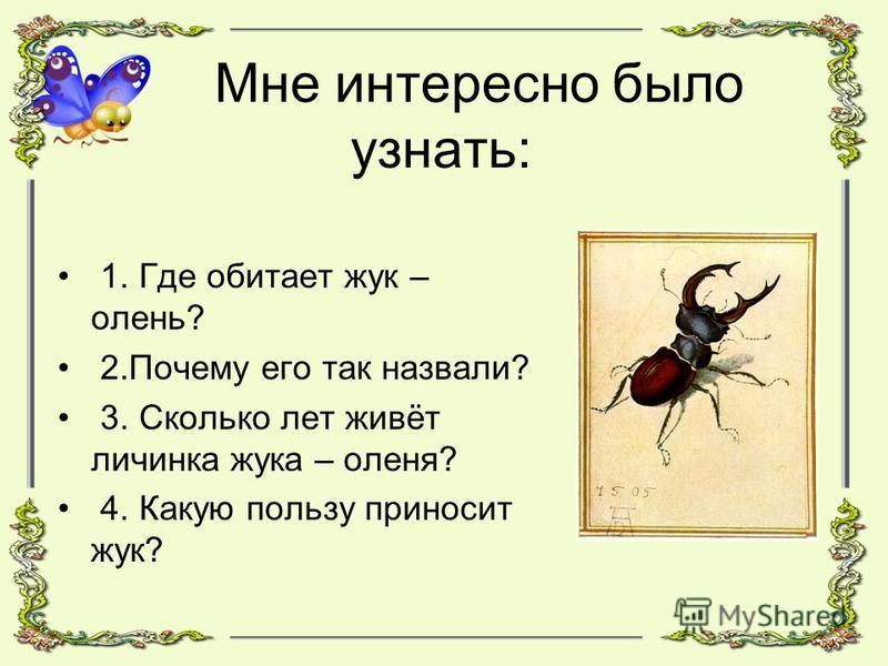 Мне интересно было узнать: 1. Где обитает жук – олень? 2. Почему его так назвали? 3. Сколько лет живёт личинка жука – оленя? 4. Какую пользу приносит жук?
