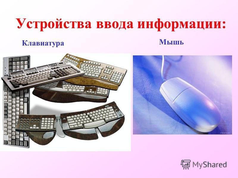 Устройства ввода информации: Клавиатура Мышь