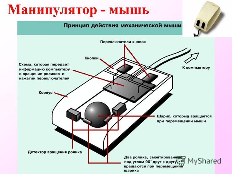 Манипулятор - мышь