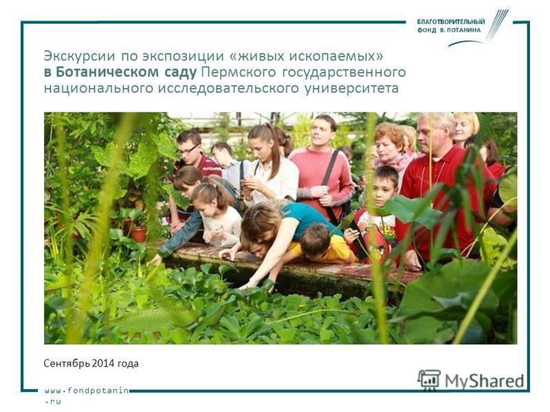 www.fondpotanin.ru Экскурсии по экспозиции «живых ископаемых» в Ботаническом саду Пермского государственного национального исследовательского университета Сентябрь 2014 года