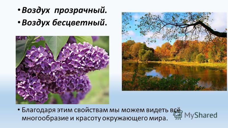 Кто не может видеть красоту окружающего мира
