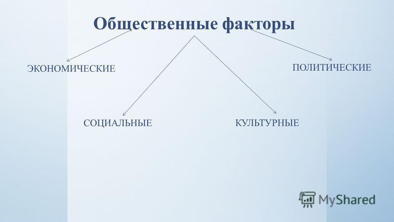 Общественные факторы ЭКОНОМИЧЕСКИЕ ПОЛИТИЧЕСКИЕ СОЦИАЛЬНЫЕ КУЛЬТУРНЫЕ