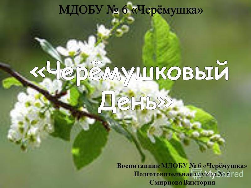 Воспитанник МДОБУ 6 «Черёмушка» Подготовительная группа 6 Смирнова Виктория