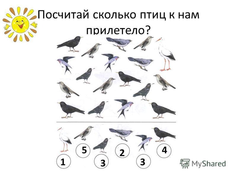 Посчитай сколько птиц к нам прилетело? 1 54 3 2 3