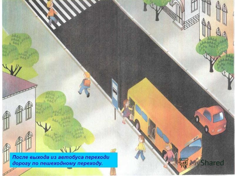 После выхода из автобуса переходи дорогу по пешеходному переходу.