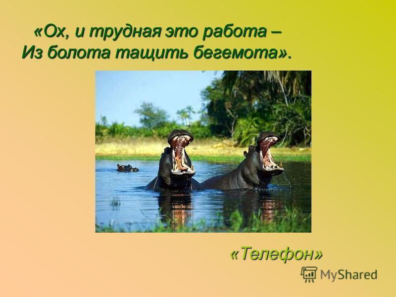 «Ох, и трудная это работа – Из болота тащить бегемота». «Телефон» «Телефон»
