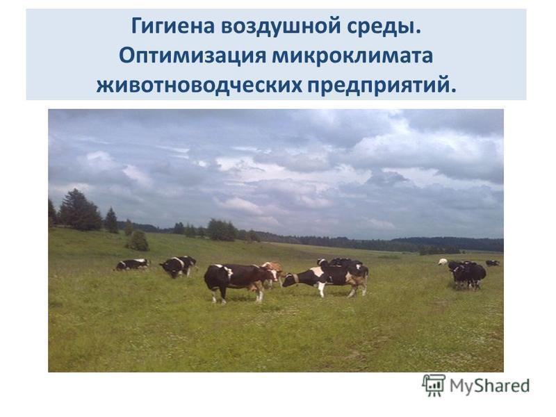 Гигиена воздушной среды. Оптимизация микроклимата животноводческих предприятий.